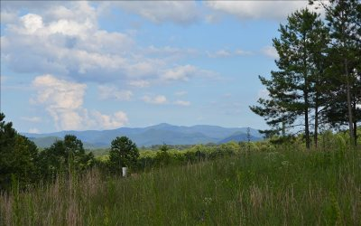 Blairsville Residential Lots & Land For Sale: Lt 73 Northshore