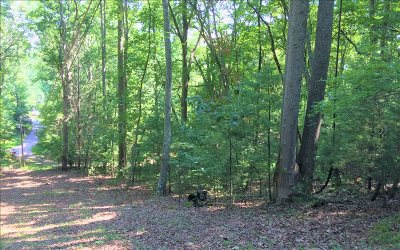 Blairsville Residential Lots & Land For Sale: McDaniel Dr