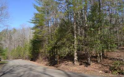 Ellijay Residential Lots & Land For Sale: # 66 Dover Falls Road