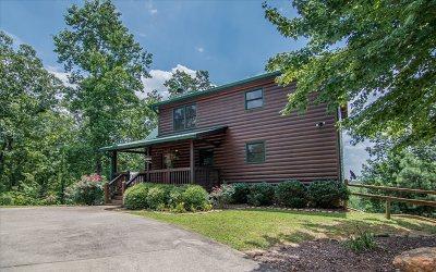 Ellijay Single Family Home For Sale: 35 Lakeside Trail