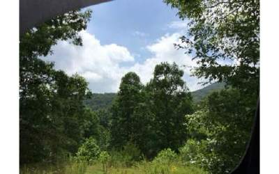 Ellijay Residential Lots & Land For Sale: 349 Ralston Creek Trail
