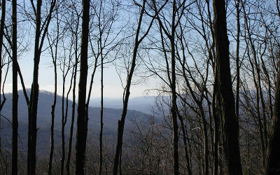 Ellijay Residential Lots & Land For Sale: 6 Moss Creek Trail