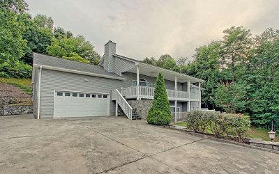 Hiawassee Single Family Home For Sale: 1292 Ramey Mountain Road