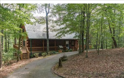 Ellijay Single Family Home For Sale: 212 S Twin Oaks Drive