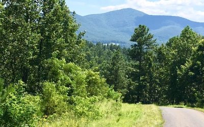 Blairsville Residential Lots & Land For Sale: Lt 40 Hills At Queen Gap