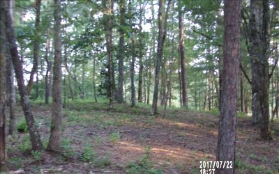 Ellijay Residential Lots & Land For Sale: Lot 7 Chimney Ridge Rd