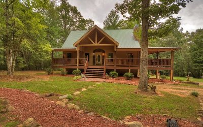 Blue Ridge Single Family Home For Sale: 896 Dial Road