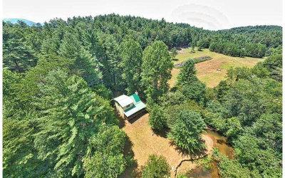 Blue Ridge Single Family Home For Sale: 383 Johns Ridge Rd