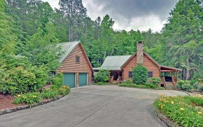 Blairsville Single Family Home For Sale: 99 Thornton Lane