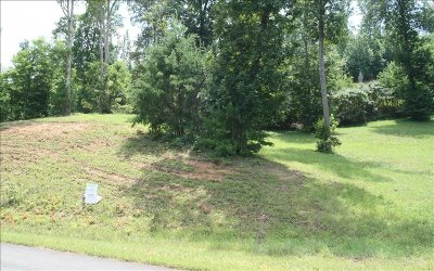 Blairsville Residential Lots & Land For Sale: Lt111 Riverside On Lake