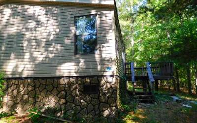 Blairsville Single Family Home For Sale: 44 Kimbrell Lane