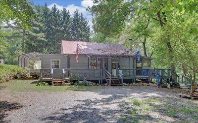 Ellijay Single Family Home For Sale: 11 Mountain Laurel Lane