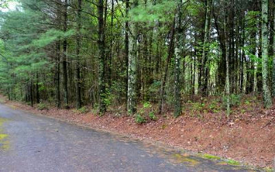 Blue Ridge Residential Lots & Land For Sale: Lot31 Twin Lakes Drive