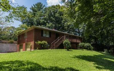 Ellijay Single Family Home For Sale: 2860 Highway 52