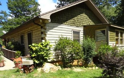 Blairsville Single Family Home For Sale: 426 Pitt Road