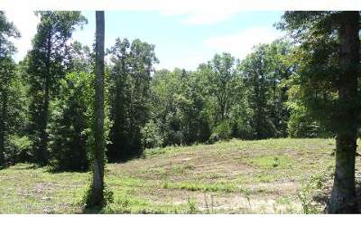 Blairsville Residential Lots & Land For Sale: Lt 21 Brookwood Hills