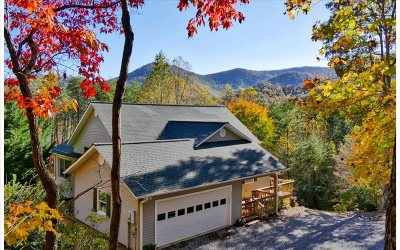 Hiawassee Single Family Home For Sale: 1062 Foxfire Lane