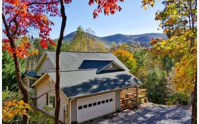 Hiawassee Single Family Home For Sale: 1062 Foxfire Lane
