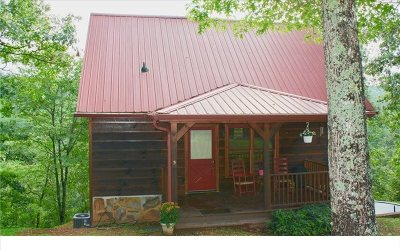 Ellijay Single Family Home For Sale: 569 Riverfront Drive