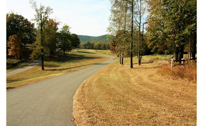 Ellijay Residential Lots & Land For Sale: Lt220 Stone Cliff Drive