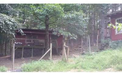 Ellijay Single Family Home For Sale: 357 Amber Lane