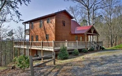 Blue Ridge Single Family Home For Sale: 88 Black Gum Lane