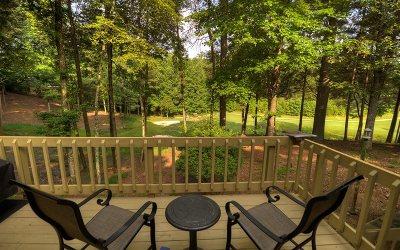 Ellijay Single Family Home For Sale: 990 Cherokee Drive