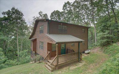 Blairsville Single Family Home For Sale: 251 Mattie Ln