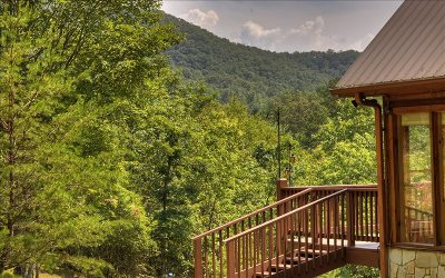 Mineral Bluff Single Family Home For Sale: 324 Copperhead Trail
