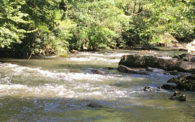 Ellijay Residential Lots & Land For Sale: Chatsworth Hwy 50 Ac