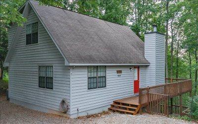 Ellijay Single Family Home For Sale: 1085 Walnut Ridge