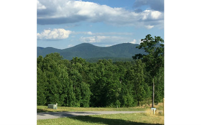 Blairsville Residential Lots & Land For Sale: 26 Clay Drive