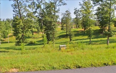 Blairsville Residential Lots & Land For Sale: Lt29 Riverside Lk Nottely