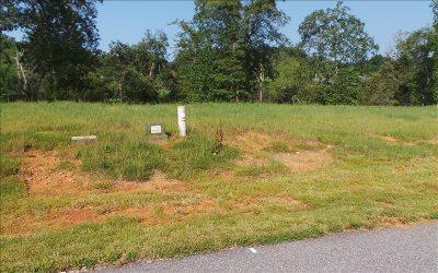 Blairsville Residential Lots & Land For Sale: Lt67 Riverside Lk Nottely