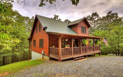Ellijay Single Family Home For Sale: 55 Nickel Lane
