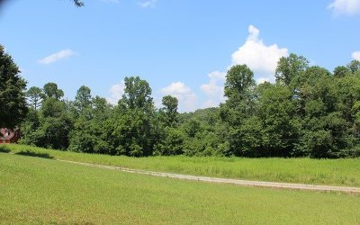 Hayesville Residential Lots & Land For Sale: 4a Mtn Harbour