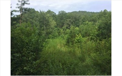 Blue Ridge Residential Lots & Land For Sale: Lot 5 Weaver Creek Mountai
