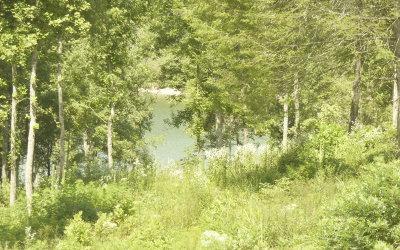 Blairsville Residential Lots & Land For Sale: Lt 28 Hidden Harbor