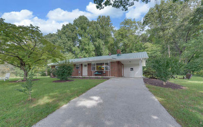 Hayesville Single Family Home For Sale: 345 Hiawassee Street