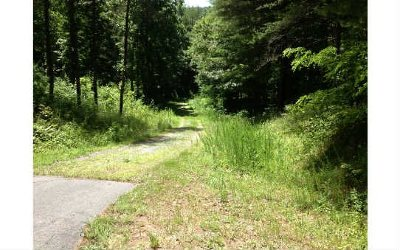 Brasstown Residential Lots & Land For Sale: 35 Trillium Heights