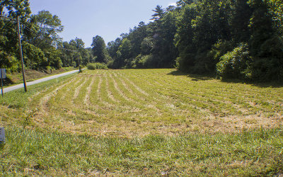 Blue Ridge Residential Lots & Land For Sale: Old Hwy 76