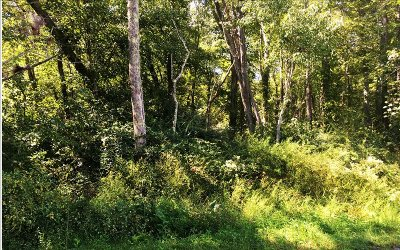 Blairsville Residential Lots & Land For Sale: Crawford Rd