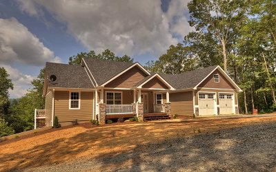 Blue Ridge Single Family Home For Sale: 389 Windy Valley Lane