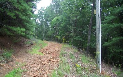 Ellijay Residential Lots & Land For Sale: Fall Cir Tract 6