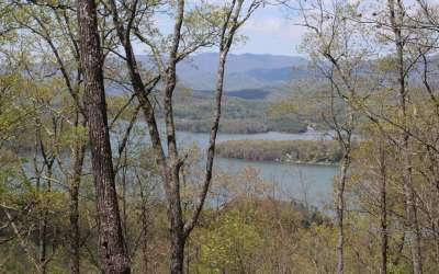 Hayesville Residential Lots & Land For Sale: Lt 55 Eagles View Circle