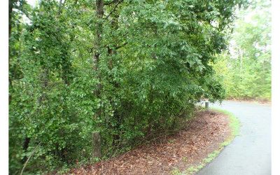 Ellijay Residential Lots & Land For Sale: L82 Bluffs Of Cartecay