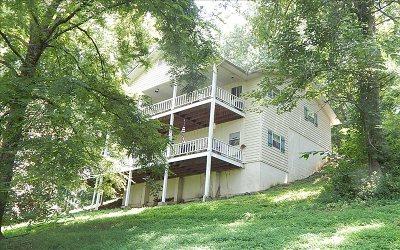 Hayesville Single Family Home For Sale: 203 Primrose Ln