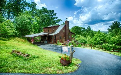 Blue Ridge Single Family Home For Sale: 303 Pine Forest Loop