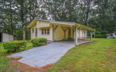 Ellijay Single Family Home For Sale: 1053 Mount Zion Rd