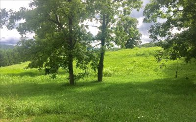 Blairsville Residential Lots & Land For Sale: Lt 14 Town Creek Sch. Rd